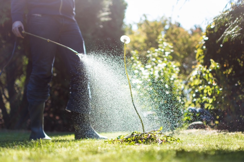 Gardening and Exposed Pest Management